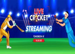 Ways to Choose Better Live Streaming Platforms for ICC Cricket World 2019