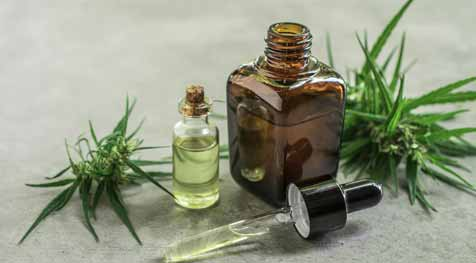 Know About the Uses of CBD Oil For Osteoporosis